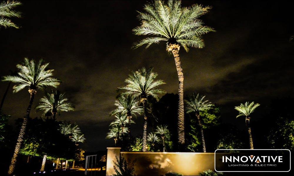 Specialty Lights – Outdoor Lighting